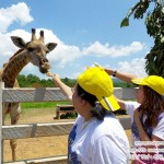Farm Tour @ singha park the adventure