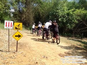 ขี่จักรยานเสือภูเชา @ Singha park Chiang Rai